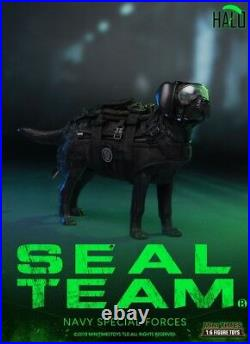 1/6 Mini times toys M013 US Navy SEAL Team B HALO WithDog Figure Full Set
