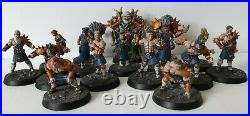 Blood Bowl Norse Full Team Painted